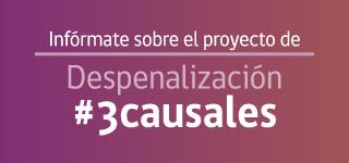 PROYECTO DE LEY DE DESPENALIZA EL EMBARAZO EN 3 CAUSALES
